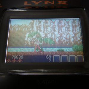 ライガーのゲーム画面です